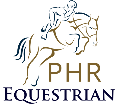 Escuela de Hípica logo equestrian(1)